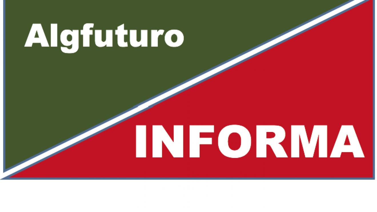 "Boletim ""Algfuturo Informa"" Nº10"