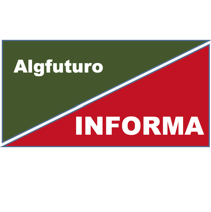 "Boletim ""Algfuturo Informa"" Nº2"