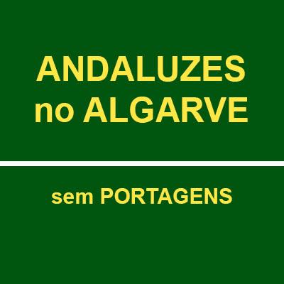 ATENUAR GARROTE DAS PORTAGENS: CUSTO ZERO PARA ALGARVIOS EM ANDALUZIA E ANDALUZES NO ALGARVE, JÁ!